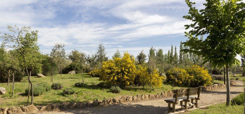Jardin botanico Prado de las Pavas 2015 (84)