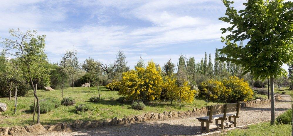 Jardin botanico Prado de las Pavas 2015 (85)