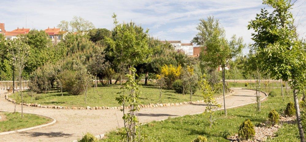 Jardin botanico Prado de las Pavas 2015 (86)