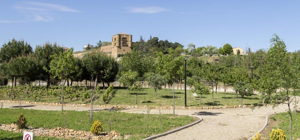 Jardin botanico Prado de las Pavas 2015 (87)