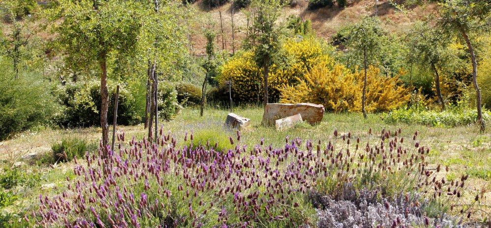 Prado de las Pavas Jardin Botanico (108)