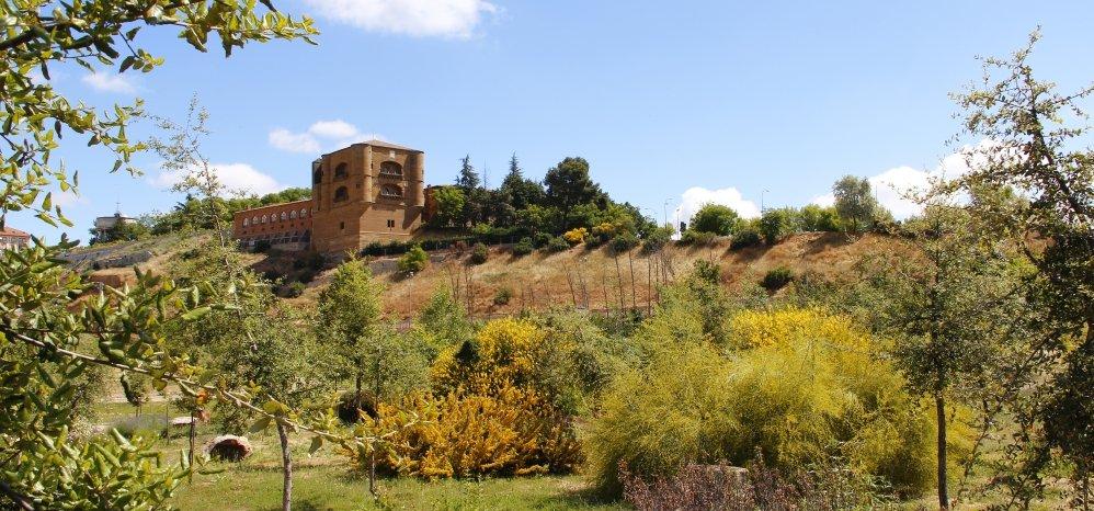 Prado de las Pavas Jardin Botanico (112)