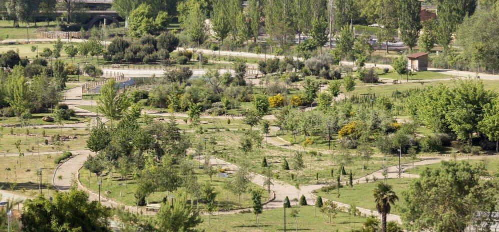 Prado de las Pavas Jardin Botanico (124)