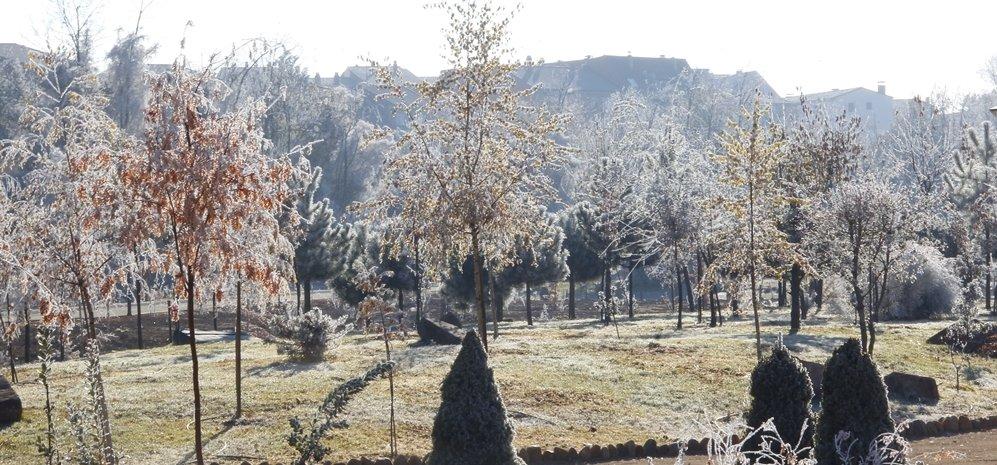 Prado de las Pavas Jardin Botanico (37)