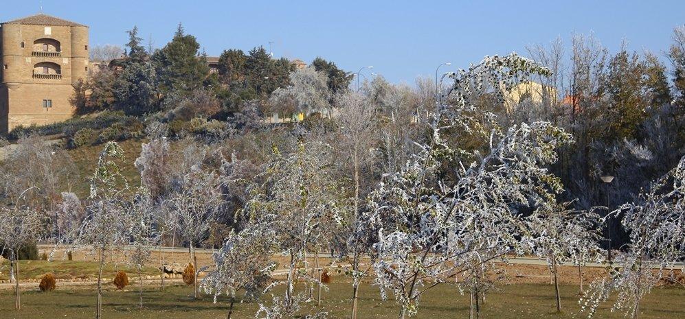 Prado de las Pavas Jardin Botanico (50)