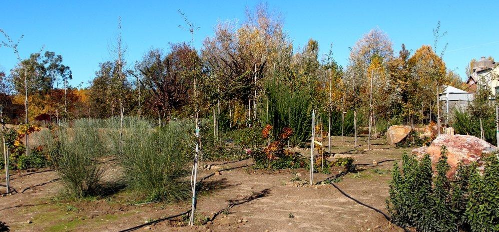 Prado de las Pavas Jardin Botanico (58)