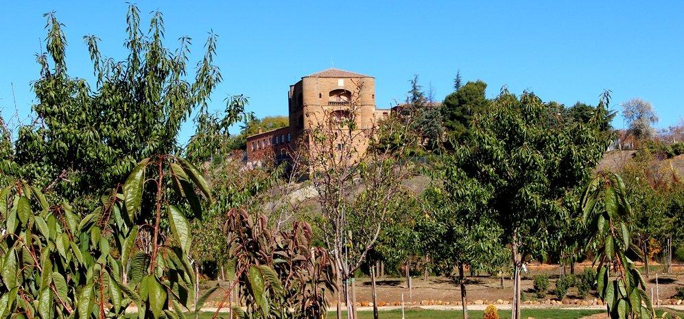 Prado de las Pavas Jardin Botanico (59)