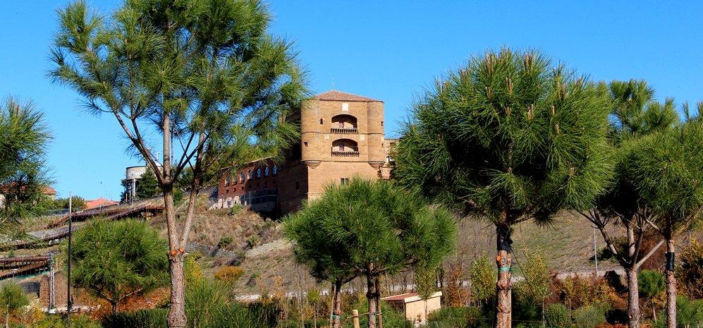 Prado de las Pavas Jardin Botanico (62)