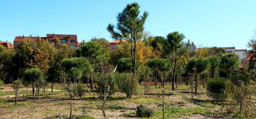 Prado de las Pavas Jardin Botanico (63)