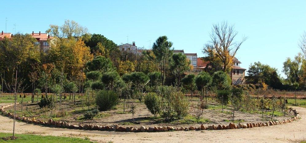 Prado de las Pavas Jardin Botanico (66)