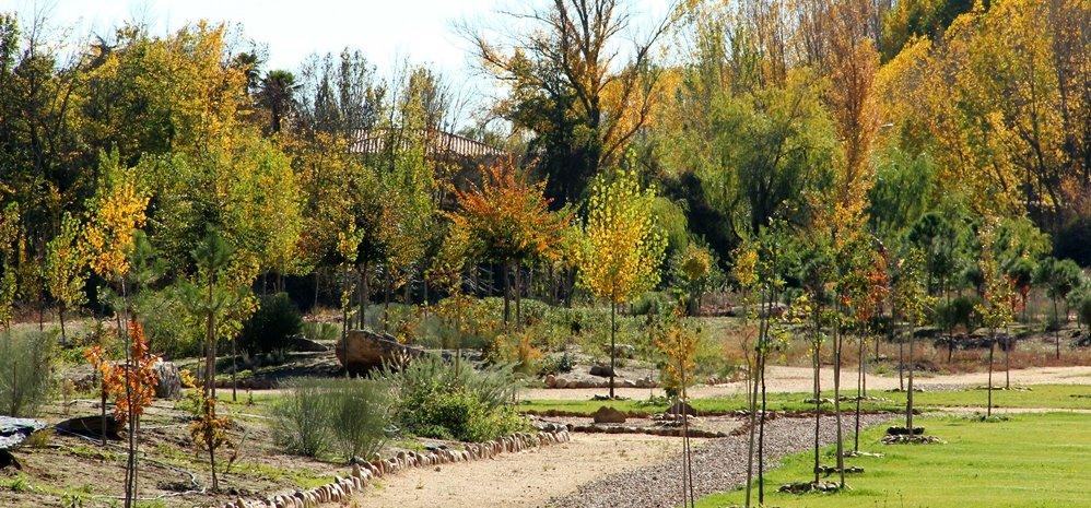 Prado de las Pavas Jardin Botanico (74)