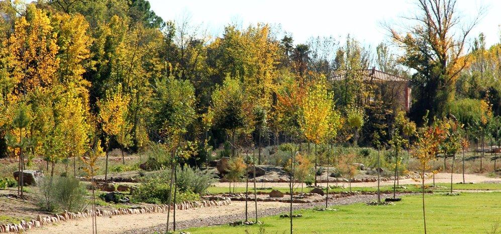 Prado de las Pavas Jardin Botanico (75)
