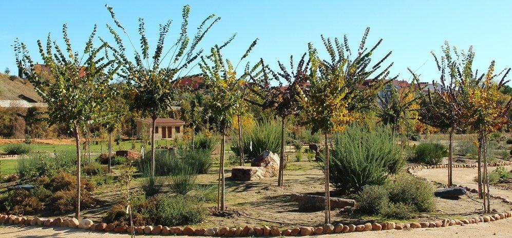 Prado de las Pavas Jardin Botanico (77)