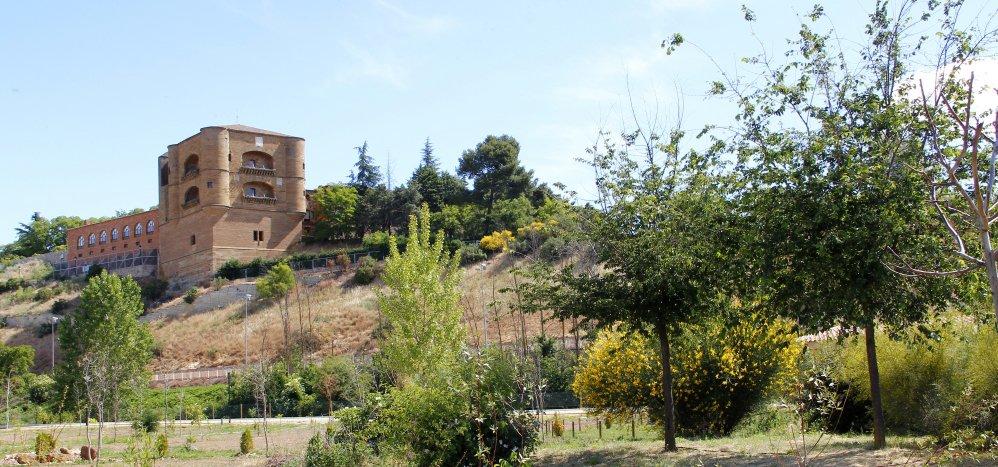Prado de las Pavas Jardin Botanico (81)